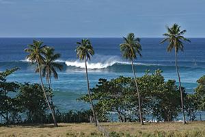 Surfing In Rincon Puerto Rico